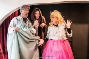 The Complete Works of William Shakespeare (Abridged). Picture by EL Rorke Photography.